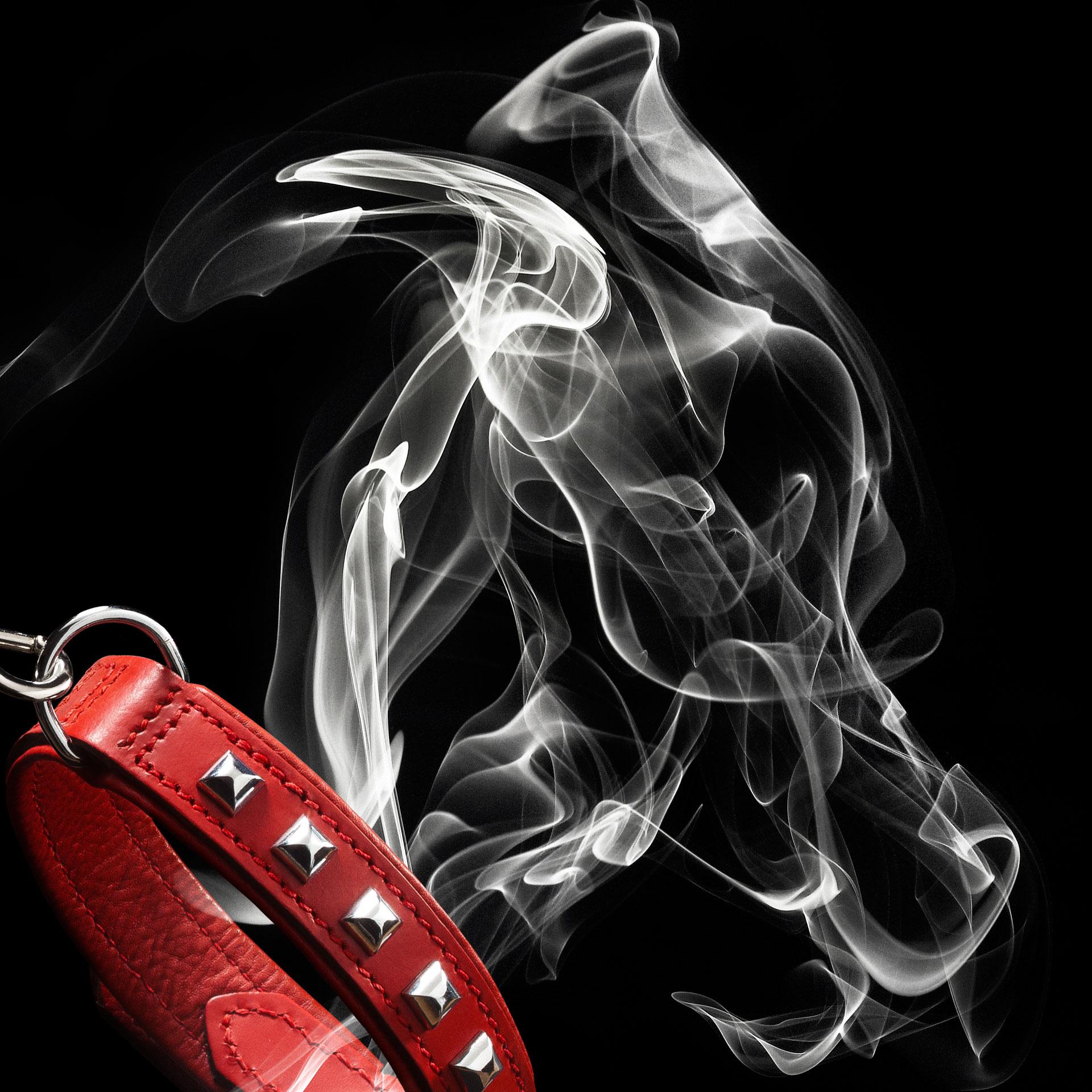 Fumées