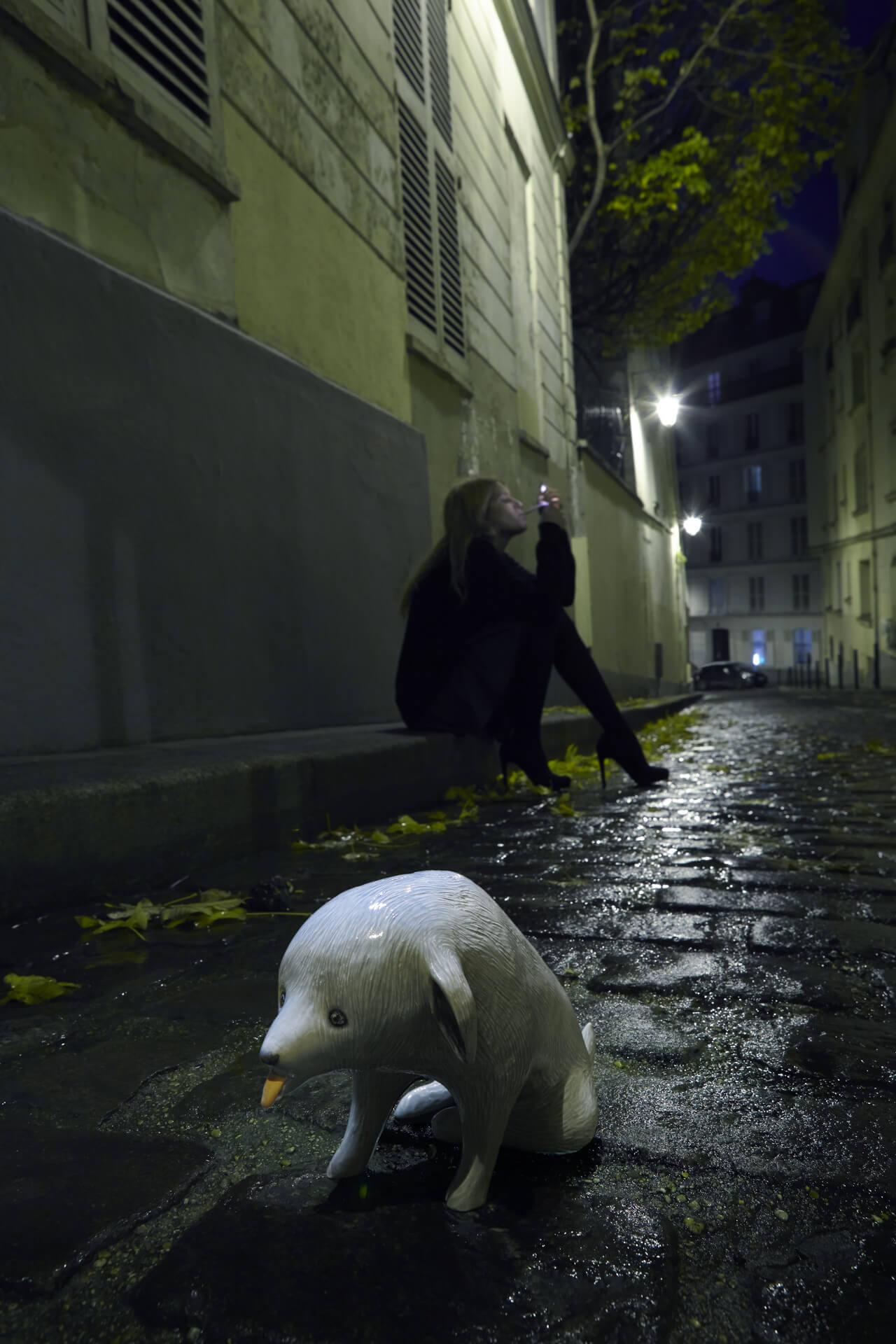 Theo Delhaste photographe specialiste nature morte